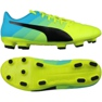 Chaussures de football Puma evoPOWER 4.3 Fg multicolore