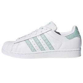 Blanc Chaussures Adidas Originals Superstar dans CG5461