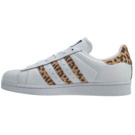 Blanc Adidas Originals Superstar chaussures W CQ2514