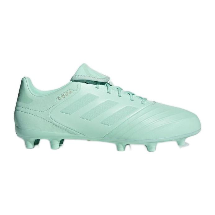 Chaussures de football Adidas Copa 18.3 Fg M vert