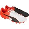 Chaussures de football Puma evoSPEED 4.5 Tricks Fg M 10359203 rouge blanc, noir, rouge