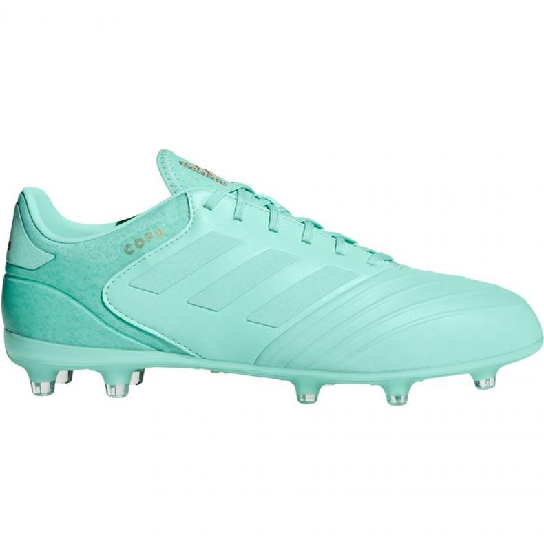Chaussures de foot adidas Copa 18.2 FG M DB2446 bleu