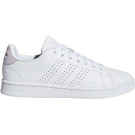 Adidas Advantage W F36481 chaussures blanc