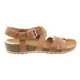 Brun Chaussures camel Big Star pour femmes 274A010