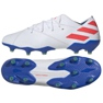 Chaussures de foot adidas Nemeziz Messi 19.1 Fg M F34402