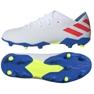 Chaussures de foot adidas Nemeziz Messi 19.3 Fg M F34400