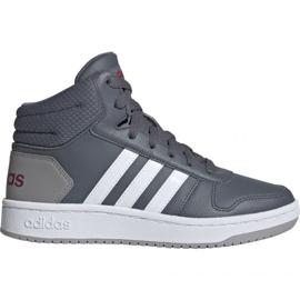 Gris Chaussures adidas Hoops Mid 2.0 Jr EE6709