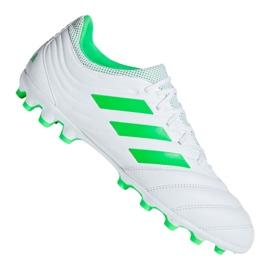 Chaussures de foot adidas Copa 19.3 Ag M F35775 blanc blanc