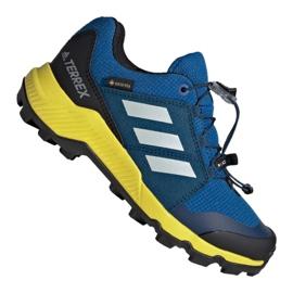 Bleu Adidas Terrex Gtx Jr BC0599 chaussures