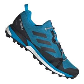 Chaussures Adidas Terrex Skychaser Lt Gtx M F36107