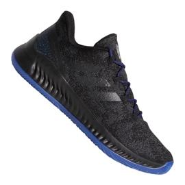 Chaussures Adidas Harden B / EXM F97250