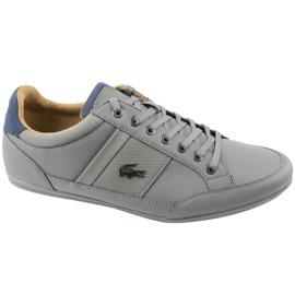 Gris Lacoste Chaymon 118 1 M CAM0011G1N81 chaussures