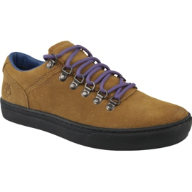 Chaussures Timberland Adv 2.0 Cupsole Alpine Ox M A1SHV brun