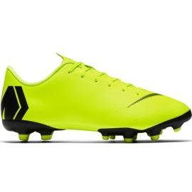Chaussures de football Nike Mercurial Vapor 12 Academy Mg Jr AH7347 701 noir, vert
