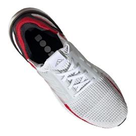 Chaussures de running adidas UltraBoost 19 M EF1341 1