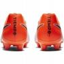 Chaussures de football Nike Tiempo Legend 7 Academy Fg M AH7242-118 image 4