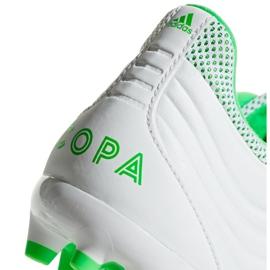 Chaussures de foot adidas Copa 19.3 Ag M F35775 blanc blanc 1