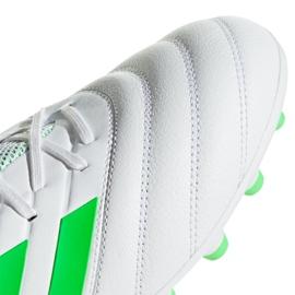 Chaussures de foot adidas Copa 19.3 Ag M F35775 blanc blanc 6