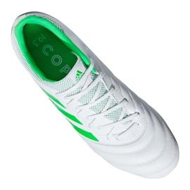 Chaussures de foot adidas Copa 19.3 Ag M F35775 blanc blanc 9