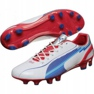 Puma Evo Speed ​​1 Fg M 102527 01 chaussure de football blanc blanc 1